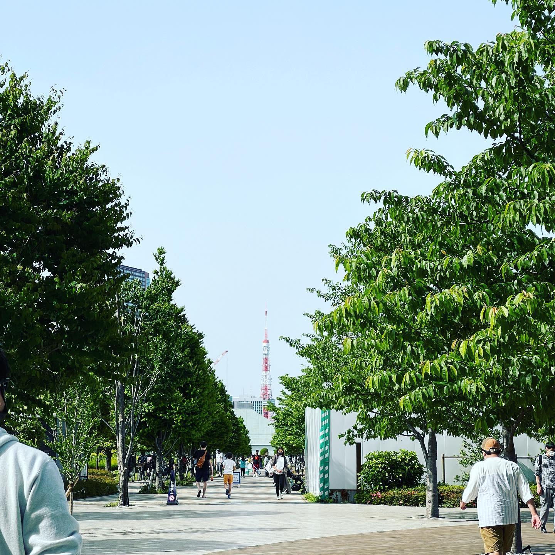 天気が良く、散歩に出ました。東京タワーがきれいに見えました。#東京タワー #品川シーズンテラス #芝浦中央公園 #散歩 #散歩日和 #散歩写真